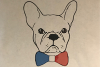 bulldog face with bow-tie illustration